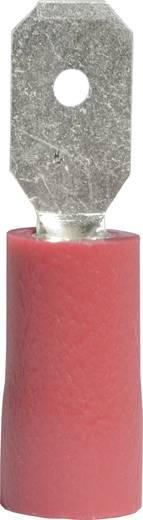 Vogt Verbindungstechnik 392808 Vlakstekker (plat) Insteekbreedte: 4.8 mm Insteekdikte: 0.8 mm 180 ° Deels geïsoleerd Rood 1 stuks