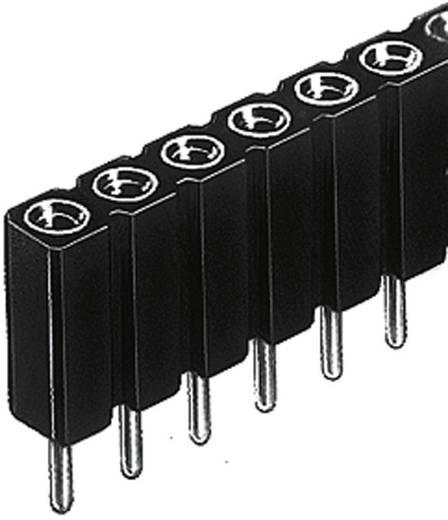 Female header (precisie) Aantal rijen: 1 Aantal polen per rij: 36 Fischer Elektronik BL 5 025/ 36/Z 1 stuks