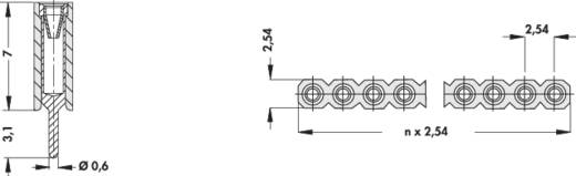 Female header (precisie) Aantal rijen: 1 Aantal polen per rij: 36 Fischer Elektronik BL 5/ 36/Z 1 stuks