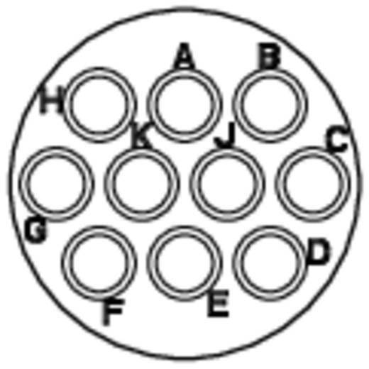 Kabelconnector-bus - serie RT360 Nominale stroom (details): 5 A Aantal polen: 10 RT0612-10SNH Amphenol