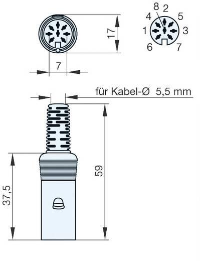 Hirschmann MAS 80 SN DIN-connector Stekker, recht Aantal polen: 8 Grijs 1 stuks