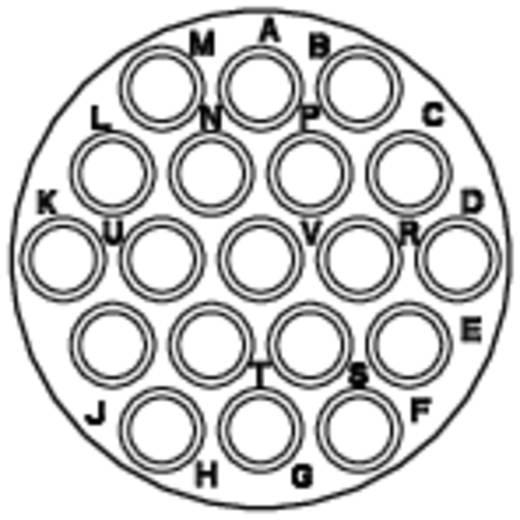 Kabelsteker - serie RT360 Kabelstekker Nominale stroom (details): 5 A Aantal polen: 19 RT0614-19PNH Amphenol Inhoud: 1 stuks