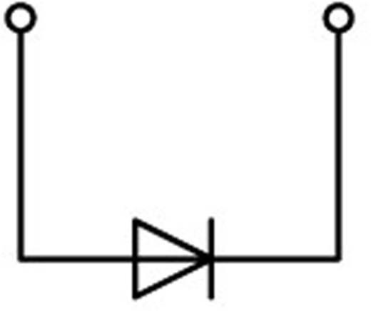 Diodeklem 4.20 mm Veerklem Toewijzing: L Grijs WAGO 2001-1211/1000-410 1 stuks