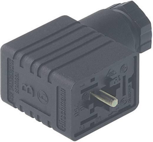 Hirschmann GM 216 NJ Stopcontact, vrij aan te passen Zwart Aantal polen:2 + PE Inhoud: 1 stuks