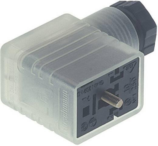 Hirschmann GMNL 216 NJ LED 24 HH Stopcontact met functieaanduiding Zwart Aantal polen:2 + PE Inhoud: 1 stuks