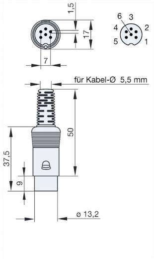 Hirschmann MAS 60 DIN-connector Stekker, recht Aantal polen: 6 Grijs 1 stuks