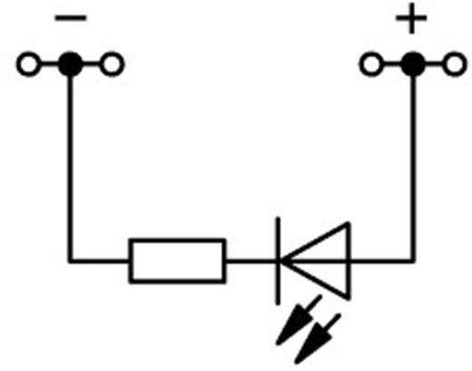 LED-klem 4.20 mm Veerklem Toewijzing: L Grijs WAGO 2001-1421/1000-413 1 stuks