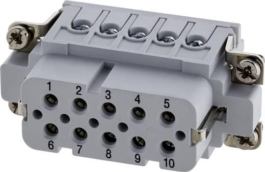 Businzetstuk Verzilverde contacten Amphenol C146 10B010 002 4 1 stuks