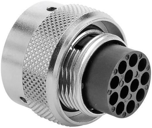 Kabelsteker - serie RT360 Kabelstekker Nominale stroom (details): 13 A Aantal polen: 12 RT0614-12PNH Amphenol Inhoud: 1