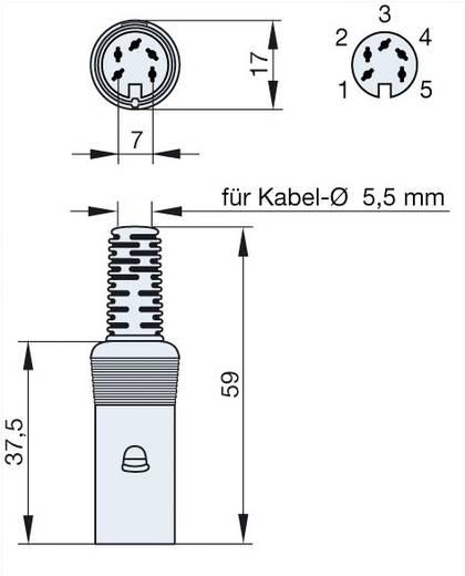 Hirschmann MAK 50 DIN-connector Bus, recht Aantal polen: 5 Grijs 1 stuks