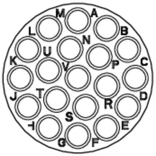 Apparaatsteker - serie RT360 Vierkante flens Aantal polen: 19 RT0016-19PNH Amphenol