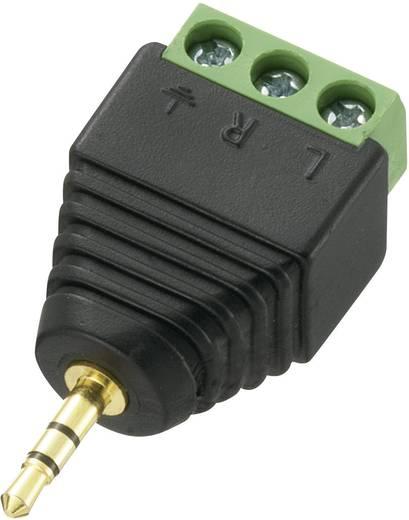 Conrad Components LT-PJ-2.5 Jackplug 2.5 mm Stekker, recht Aantal polen: 3 Stereo Zwart 1 stuks