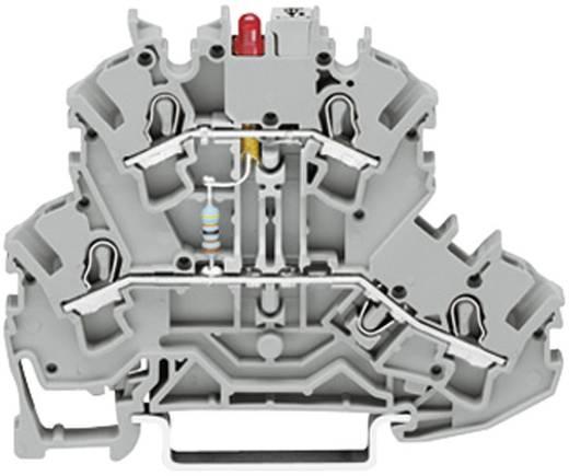 Diodeklem 2-etages 5.20 mm Veerklem Toewijzing: L Grijs WAGO 2002-2211/1000-410 1 stuks