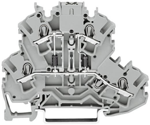 Diodeklem 2-etages 5.20 mm Veerklem Toewijzing: L Grijs WAGO 2002-2213/1000-487 1 stuks