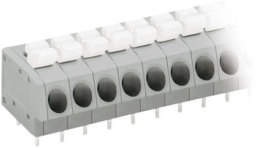 Veerkachtklemblok 2.50 mm² Aantal polen 12 WAGO Grijs, Wit 1 stuks