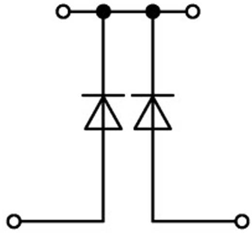 Diodeklem 2-etages 5.20 mm Veerklem Toewijzing: L Grijs WAGO 2002-2214/1000-489 1 stuks