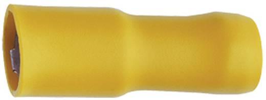 Klauke 950 Kabelschoen, female (rond) 4 mm² 6 mm² Stift-Ø: 5 mm Volledig geïsoleerd Geel 1 stuks