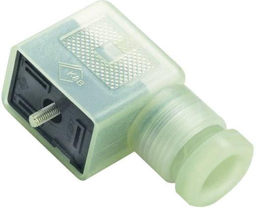 Binder 43-1834-135-03 Magnetische klepconnector model B serie 225 Transparant Aantal polen:2 + PE Inhoud: 1 stuks
