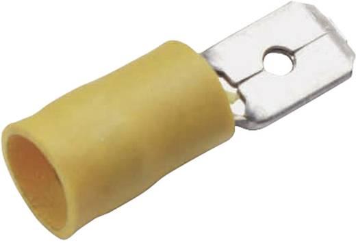 Cimco 180294 Vlakstekker (plat) Insteekbreedte: 6.3 mm Insteekdikte: 0.8 mm 180 ° Deels geïsoleerd Geel 1 stuks