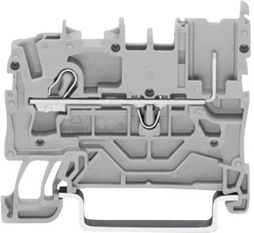 Basisklem 5.20 mm Veerklem Toewijzing: L Grijs WAGO 2022-1201 1 stuks