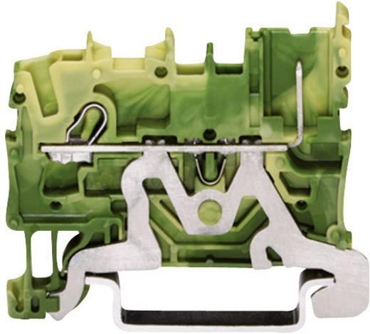 Basisklem 5.20 mm Veerklem Toewijzing: Terre Groen-geel WAGO 2022-1207 1 stuks