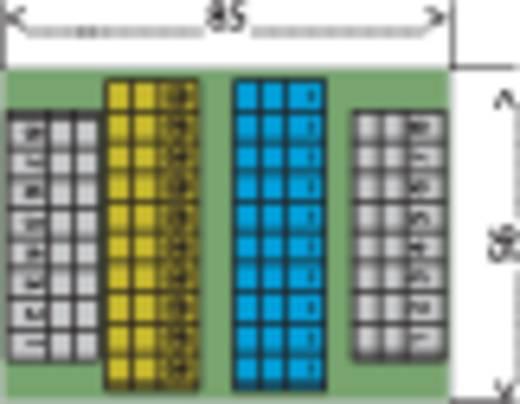 WAGO Connection module 0.08 - 2.5 mm² Inhoud: 1 stuks