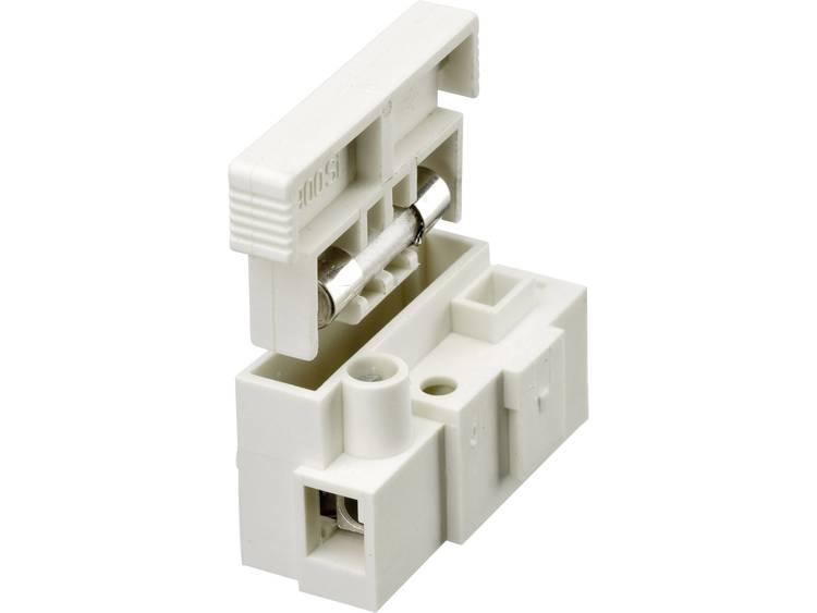 Adels-Contact 900 SI-1 Kroonsteen flexibel: 2.5-4 mm² massief: 2.5-4 mm² Aantal polen: 1 Inhoud: 1 s