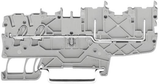 Basisklem 3.50 mm Veerklem Toewijzing: L Grijs WAGO 2020-1401 1 stuks