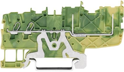 Basisklem 3.50 mm Veerklem Toewijzing: Terre Groen-geel WAGO 2020-1407 1 stuks