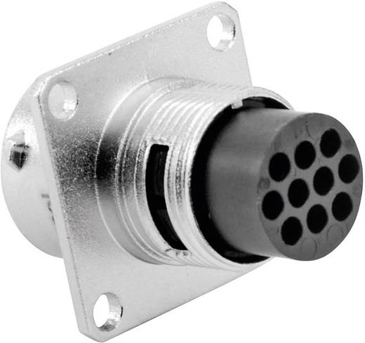 Apparaatsteker - serie RT360 Vierkante flens Aantal polen: 10 RT0012-10PNH Amphenol