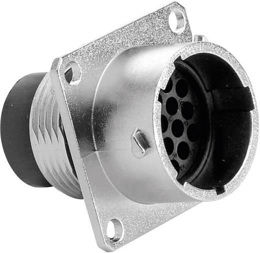 Apparaatsteker - serie RT360 Vierkante flens Aantal polen: 19 RT0014-19PNH Amphenol