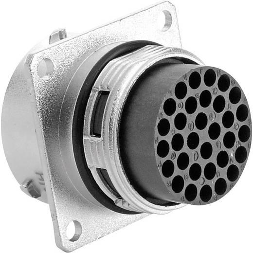 Apparaatsteker - serie RT360 Vierkante flens Aantal polen: 32 RT0018-32PNH Amphenol