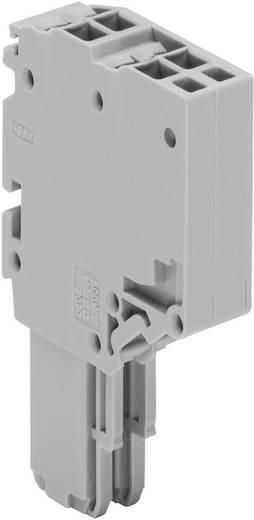 WAGO 2020-202 X-COM® S-SYSTEM-MINI 2-ader-veerlijst 1 stuks