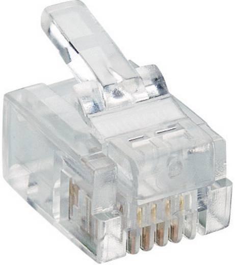 Modulairstekker Stekker, recht RJ11 Aantal polen: 6P4C P 127 Transparant Lumberg P 127 1 stuks