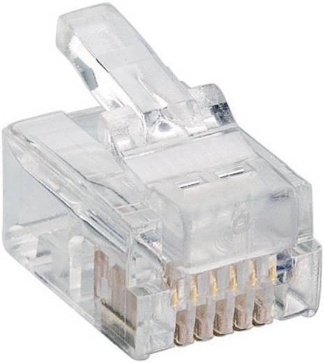 Modulairstekker Stekker, recht RJ12 Aantal polen: 6P6C