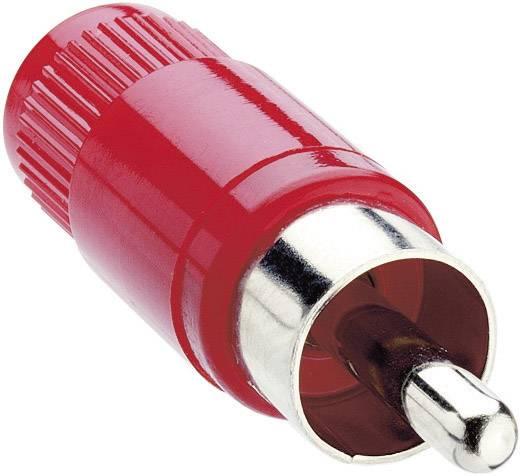Lumberg STO 1 Cinch-connector Stekker, recht Aantal polen: 2 Rood 1 stuks