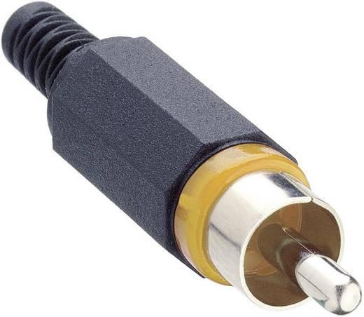 Lumberg XSTO 1 Cinch-connector Stekker, recht Aantal polen: 2 Geel 1 stuks