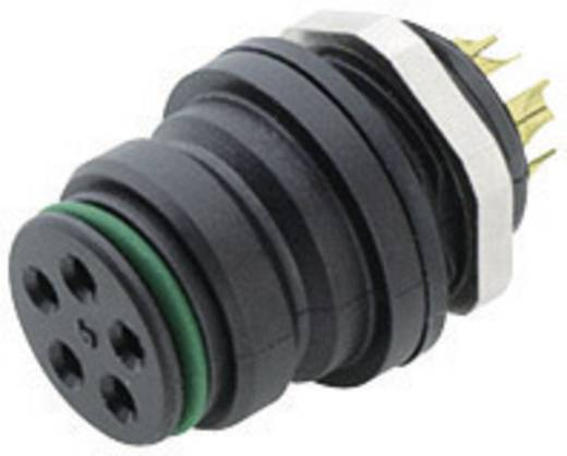 Miniatuur ronde stekker serie 720 Aantal polen: 5 Flensdoos 5 A 99-9116-00-05 Binder 1 stuks
