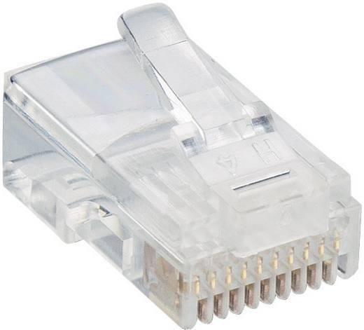 Modulairstekker Stekker, recht RJ50 Aantal polen: 10p10c<br