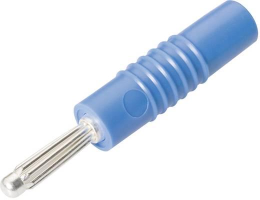 Schnepp S 4000 S Pluimstekker Stekker, recht Stift-Ø: 4 mm Blauw 1 stuks