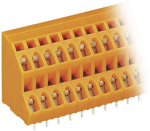 Dubbeldeksklem 2.50 mm² Aantal polen 12 WAGO Oranje 1 stuks