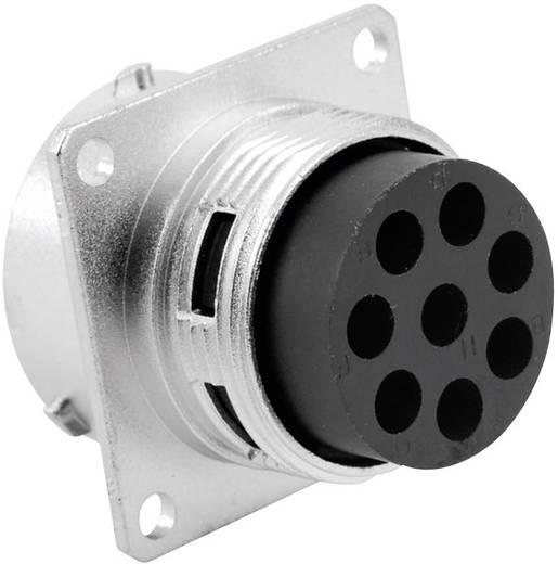 Apparaatsteker - serie RT360 Vierkante flens Nominale stroom (details): 13 A / 5 A Aantal polen: 8 RT0018-8PNH Amphenol