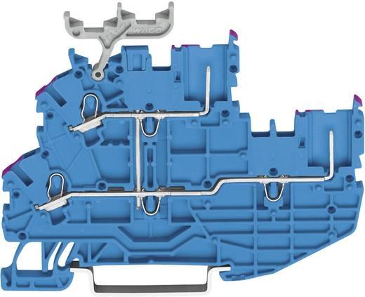 Basisklem 3.50 mm Veerklem Toewijzing: N Grijs WAGO 2020-2209 1 stuks