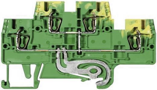Etagerandaardeklem Fasis WKFN 2,5 E/SL/35 Wieland Groen-geel Inhoud: 1 stuks
