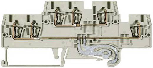 Duo-etageklem Fasis WKFN 2,5 E1/2/N/SL/35 grijs Wieland Grijs Inhoud: 1 stuks