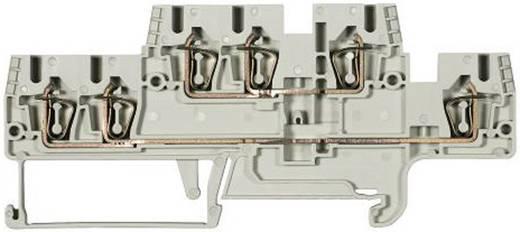 Duo-etageklem Fasis WKFN 2,5 E1/2/35 Grau Wieland Grijs Inhoud: 1 stuks