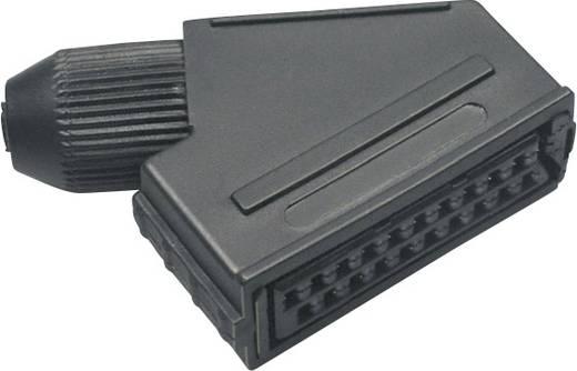 BKL Electronic 903014 SCART-connector Bus, haaks Aantal polen: 21 Zwart 1 stuks