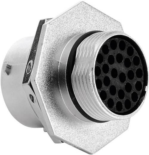 Apparaatstekker - serie RT360 Aantal polen: 26 RT0716-26PNH Amphenol