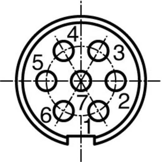 Ronde stekkerconnector Aantal polen: 7 Kabelstekker 5 A C091 31H007 100 2 Amphenol 1 stuks