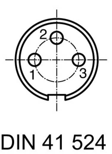 Ronde stekkerconnector Aantal polen: 3 DIN Kabelstekker 5 A C091 31H003 100 2 Amphenol 1 stuks